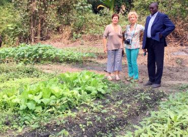 Cooperativa agricola nella giungla